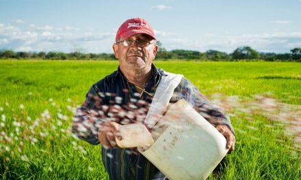 Comment devenir ingénieur agroalimentaire ?