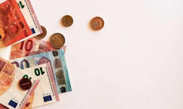 Quelles sont les principales raisons de la fluctuation du prix des actions ?