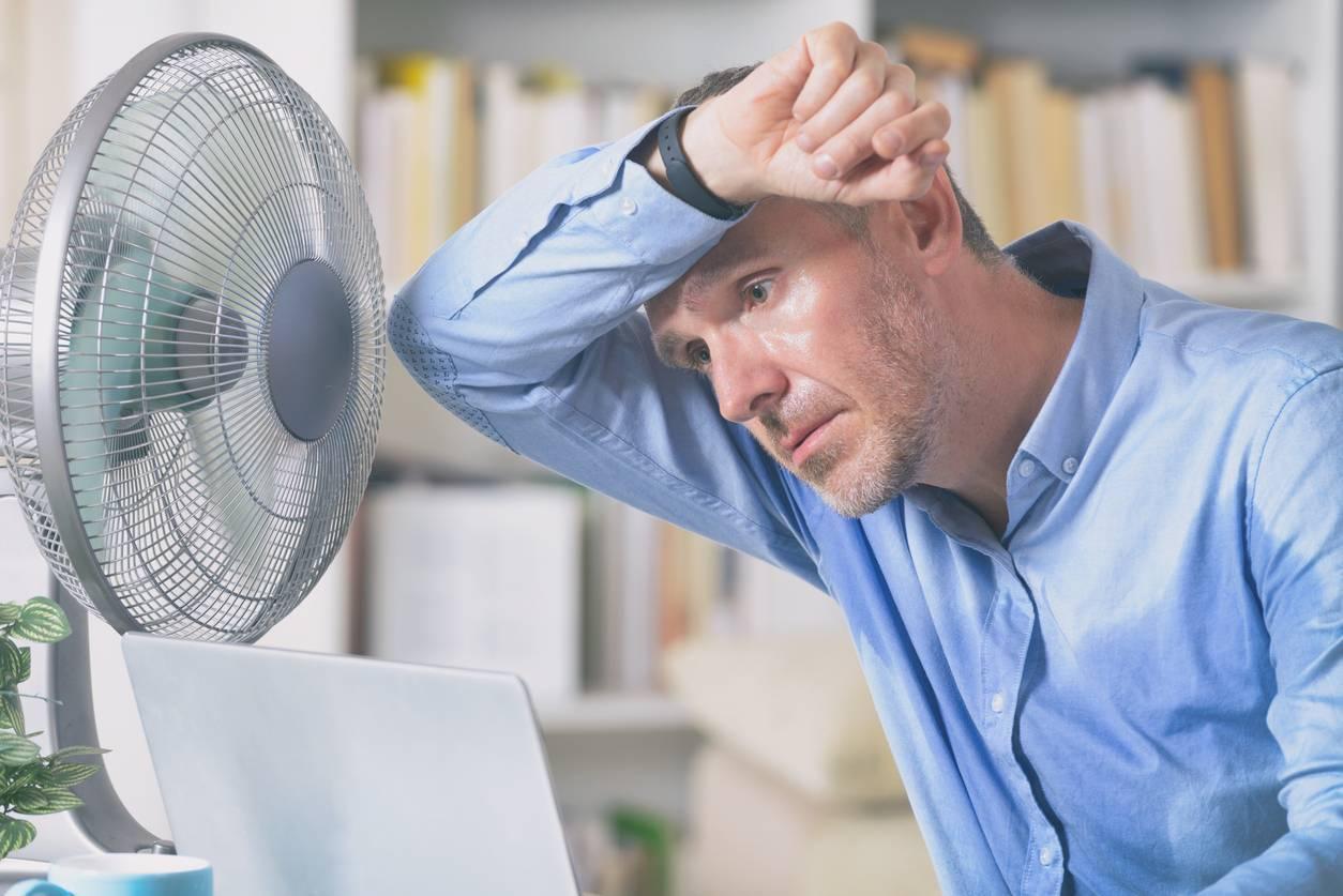 Ventilateur travail domicile