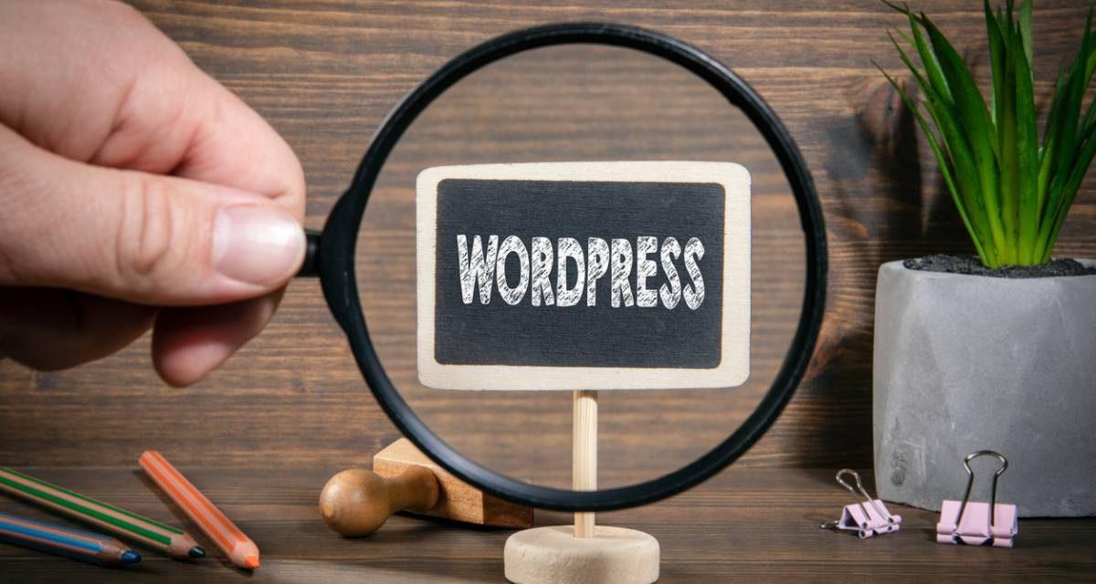 Les failles de WordPress : comment en protéger votre site ?